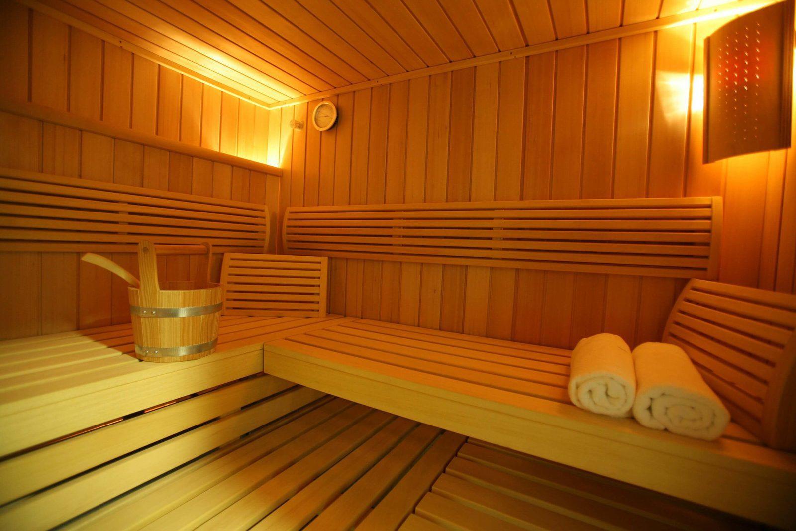 Vakantiehuizen met sauna in Nederland, Belgie, Frankrijk, Duitsland