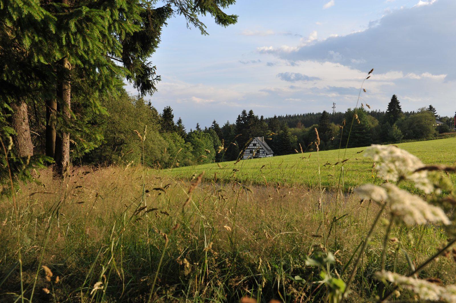 Luxe vakantiehuizen in duitsland for Weekendje weg huisje open haard