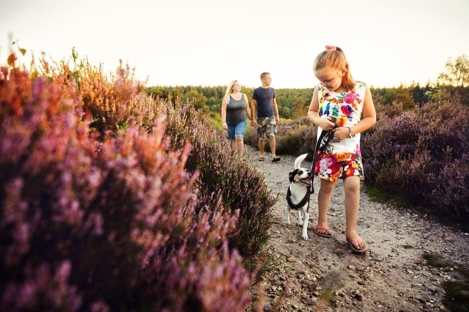 Met het gezin naar de Sallandse heuvelrug