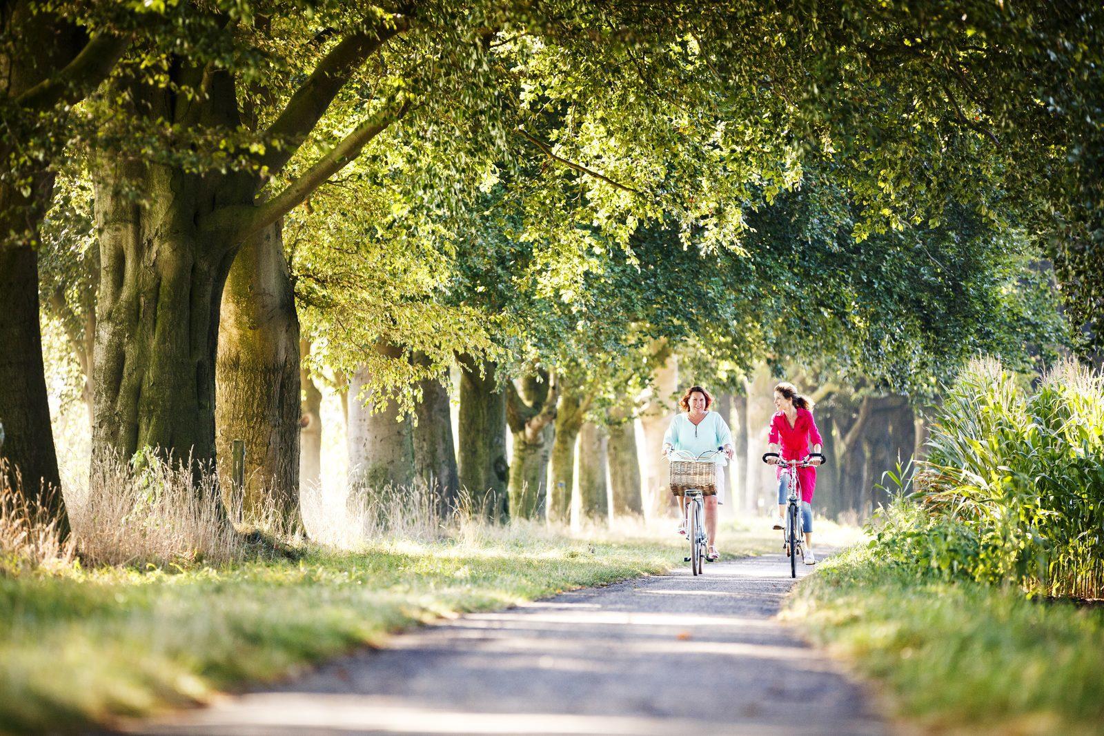 Kleinschalig vakantiepark in Twente