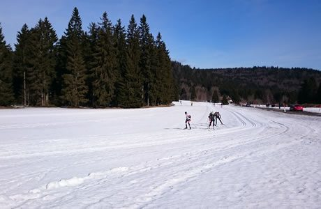 Cross country skiing Frymburk - Lipno
