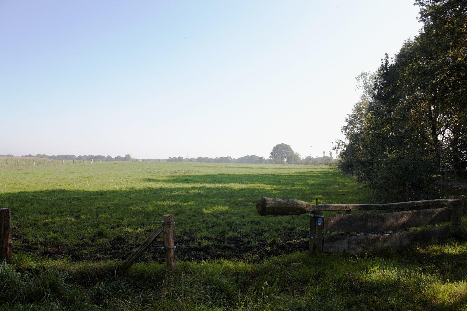 Overijssel, natuur, wandelen, fietsen, Nederland, vakantie, vakantiehuis