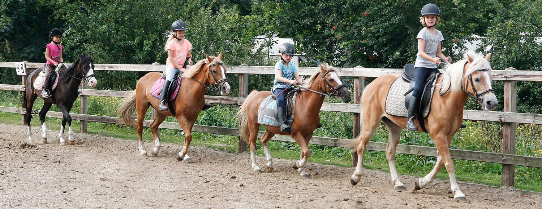 Paardrijden op de Veluwe