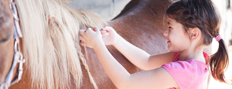 Pony Spelletjes Spektakel