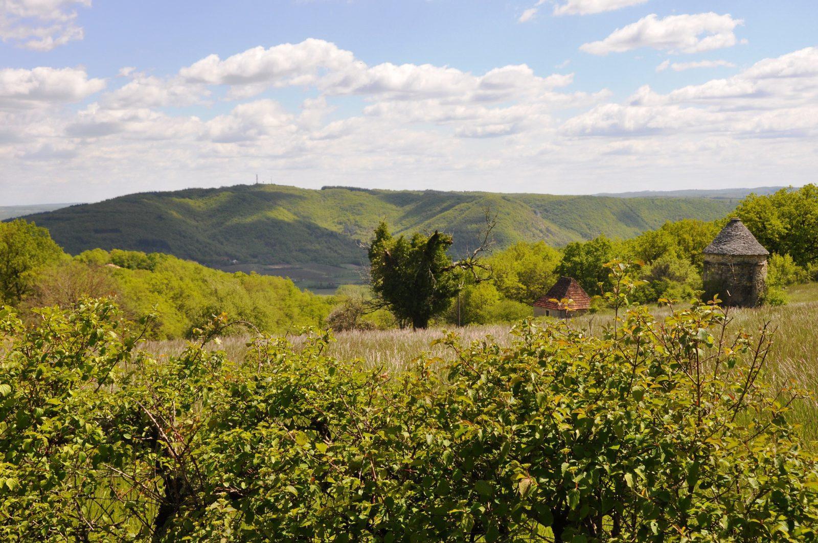Frankrijk, Dordogne, natuur, vakantiehuizen, genieten