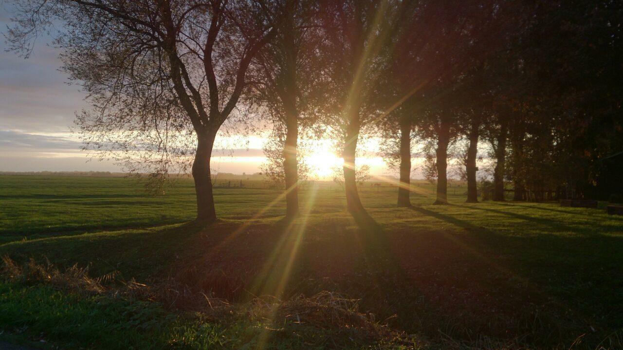 Prachtige omgeving op de Veluwe rondom Recreatiepark De Boshoek