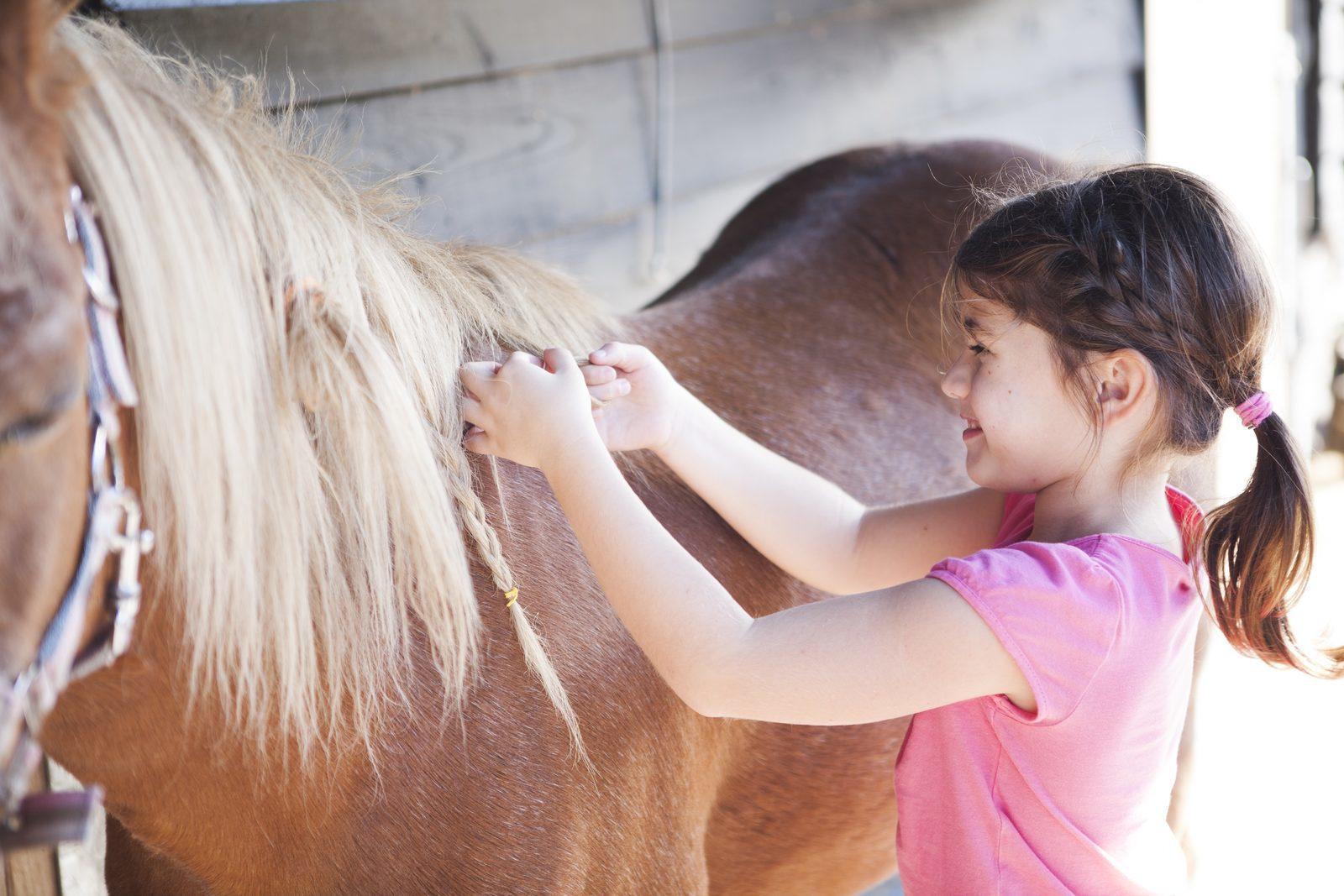Pony kinderfeestje in Voorthuizen