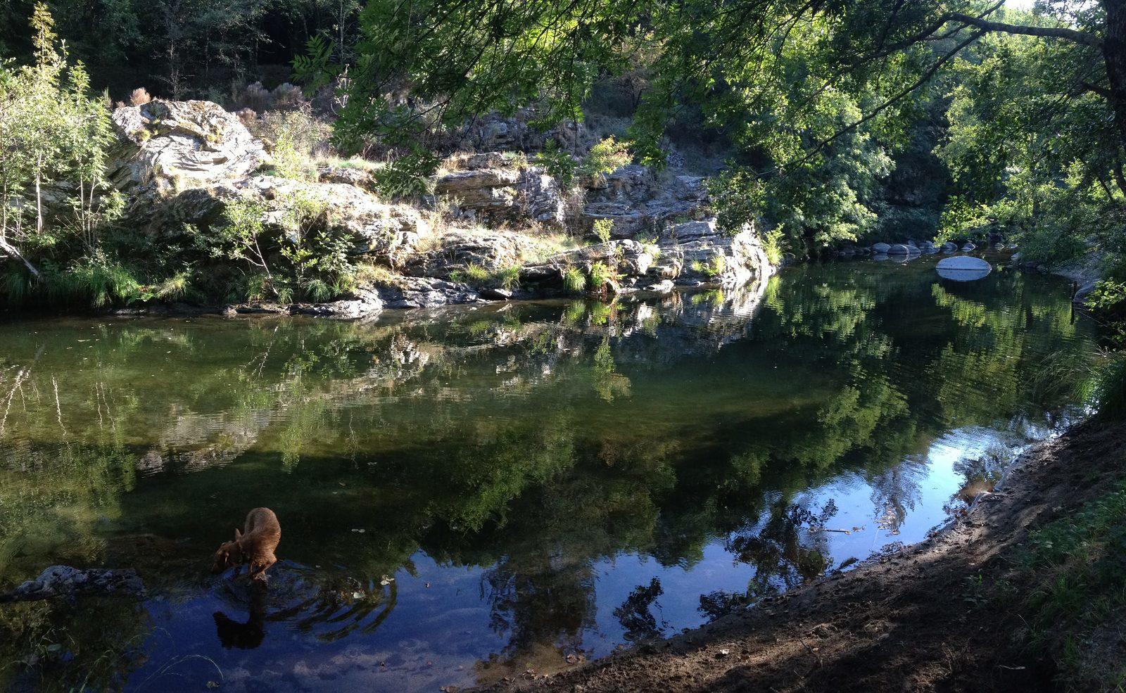 Cevennes, Frankrijk, Languedoc Roussillon, Frankrijk, rivier, vakantie, zwemmen, natuur