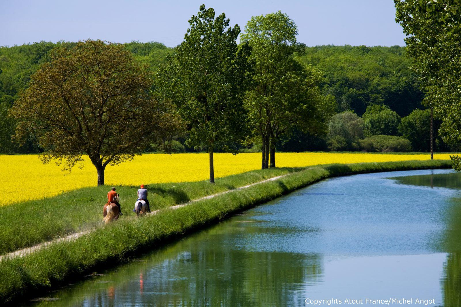Frankrijk, Bourgogne, fietsen, wandelen, wijnen, vakantie