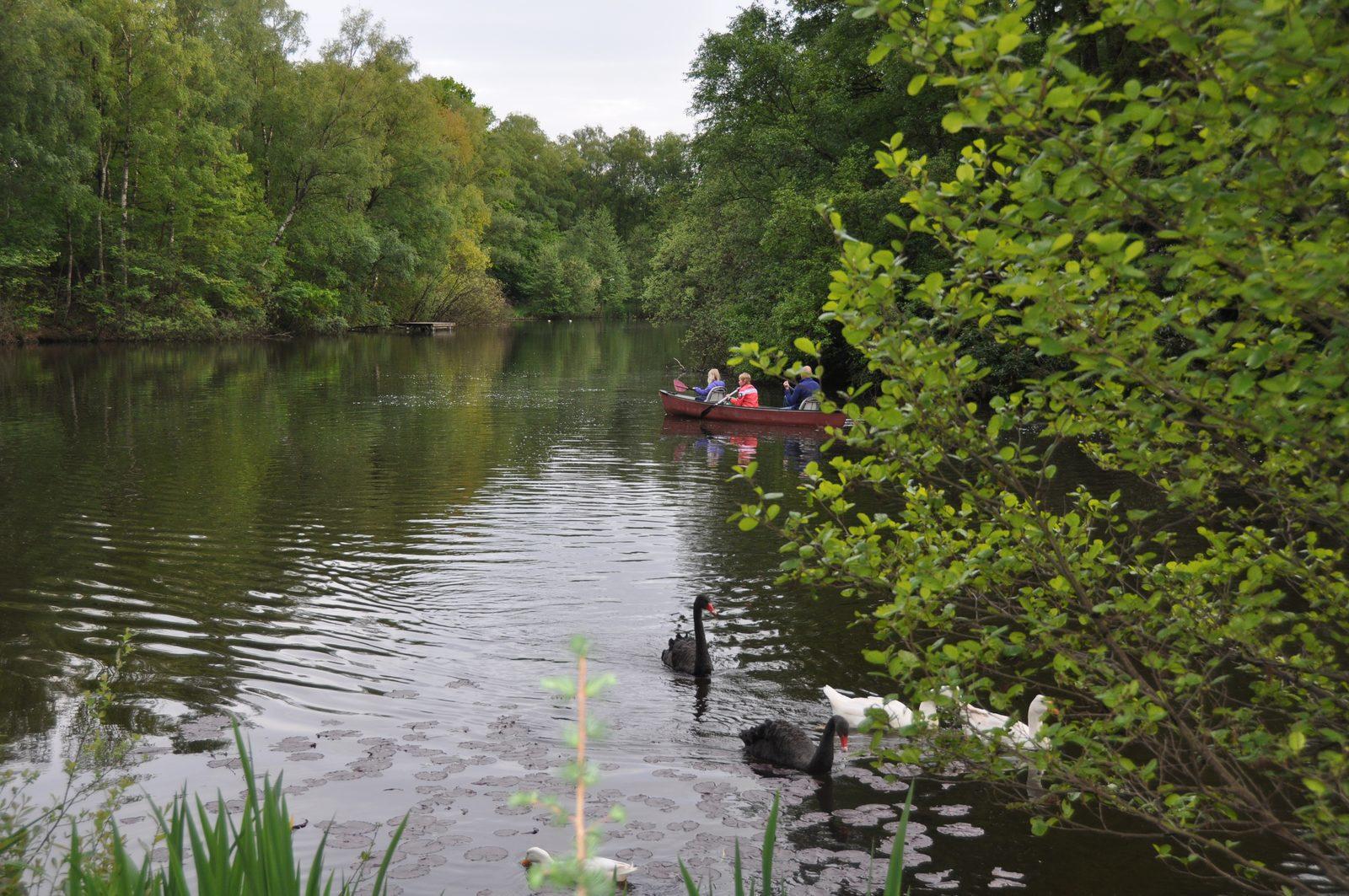 Nederland, Overijssel, Vechtdal, vakantie, weekendje weg, natuurlijke zwemvijver, vissen