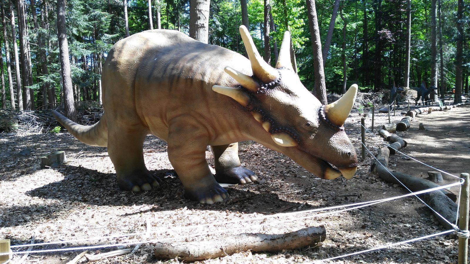 Prehistoric Museum De Groene Poort