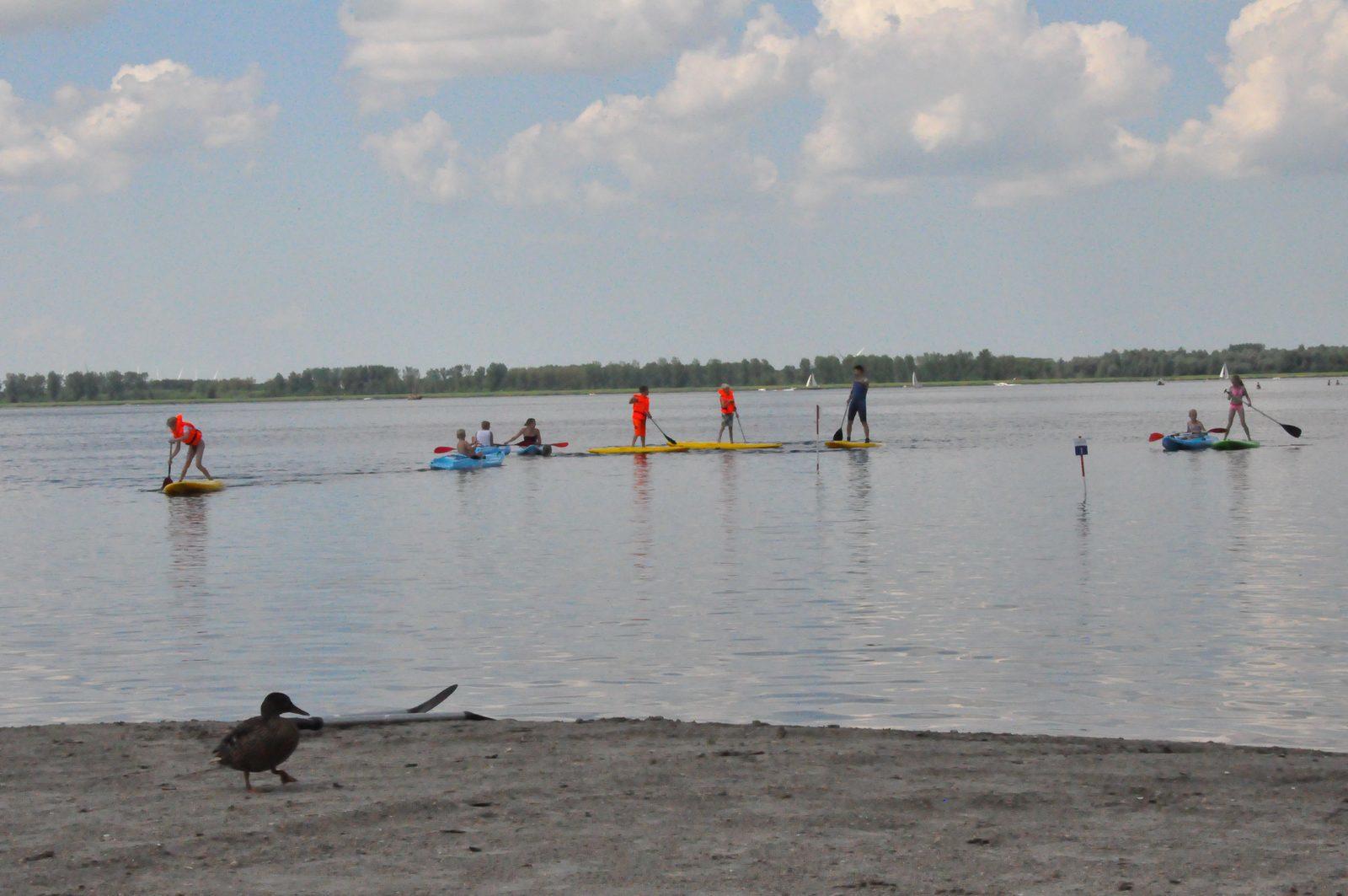 Verhuur van kano's en supboards