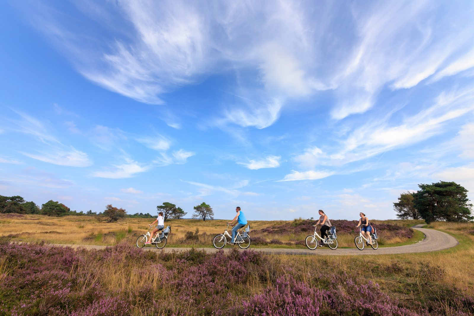 Nationalpark De Hoge Veluwe