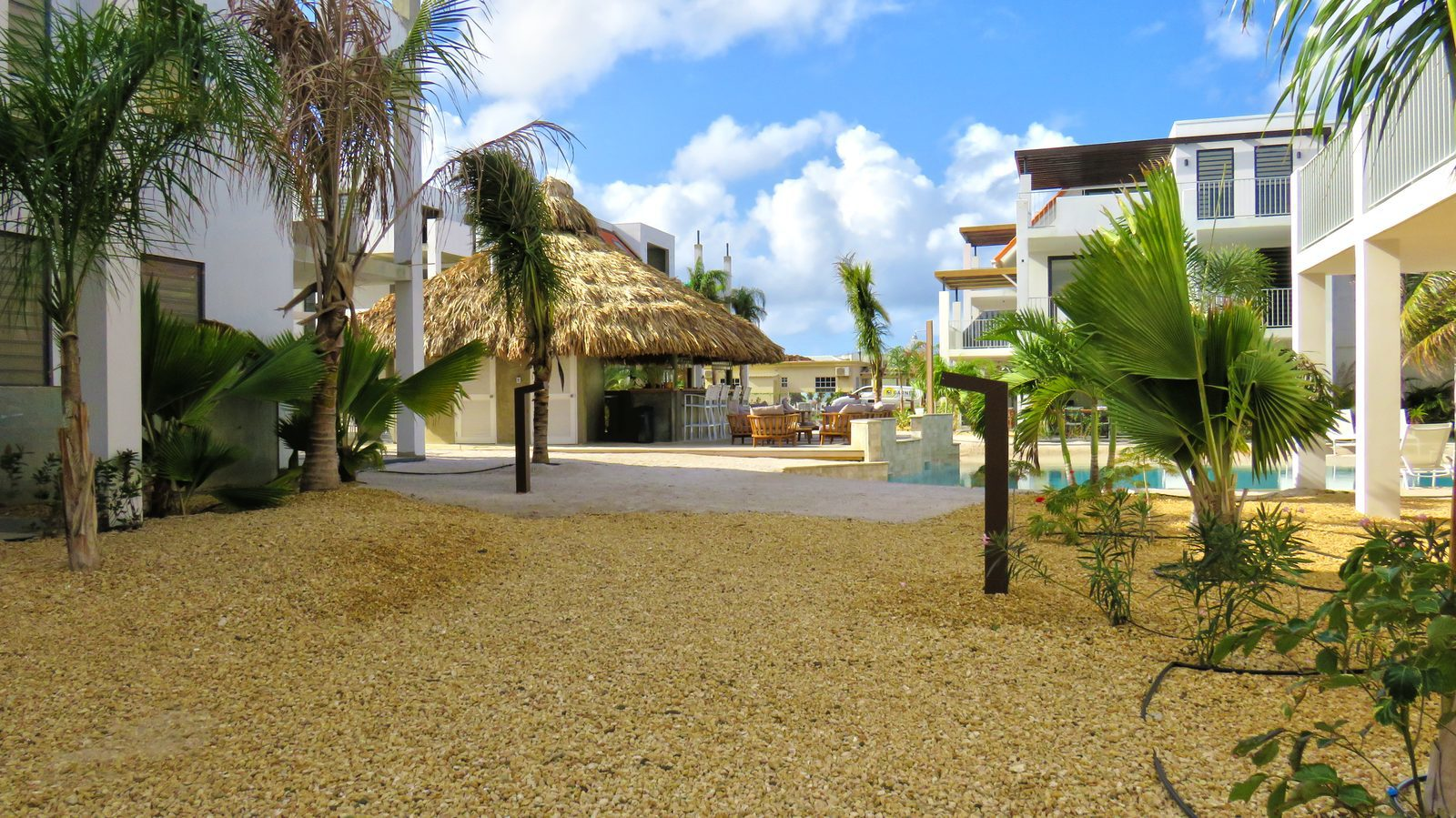 Resort Bonaire is een van de vele resorts op dit prachtige eiland. Bekijk meer foto's  van o.a. onze faciliteiten en de opties van dit eiland.