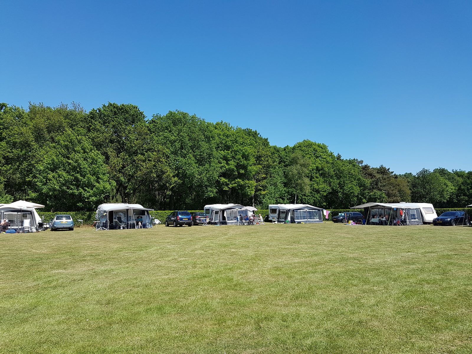 Camping pitches surrounded by nature!