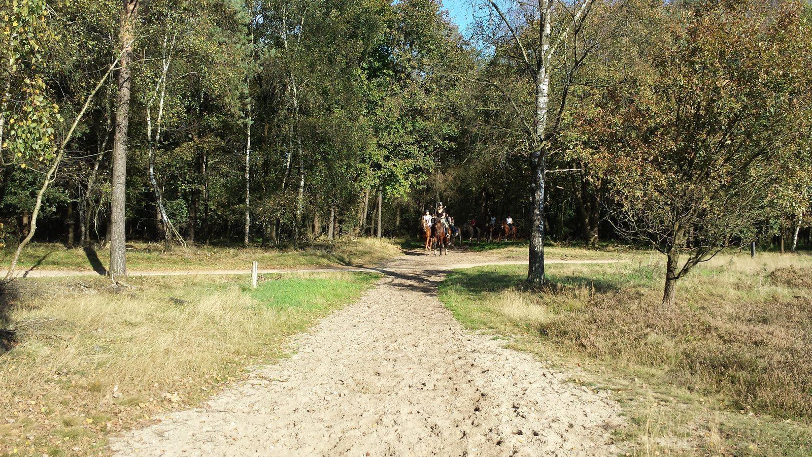 Paardrijden op vakantie