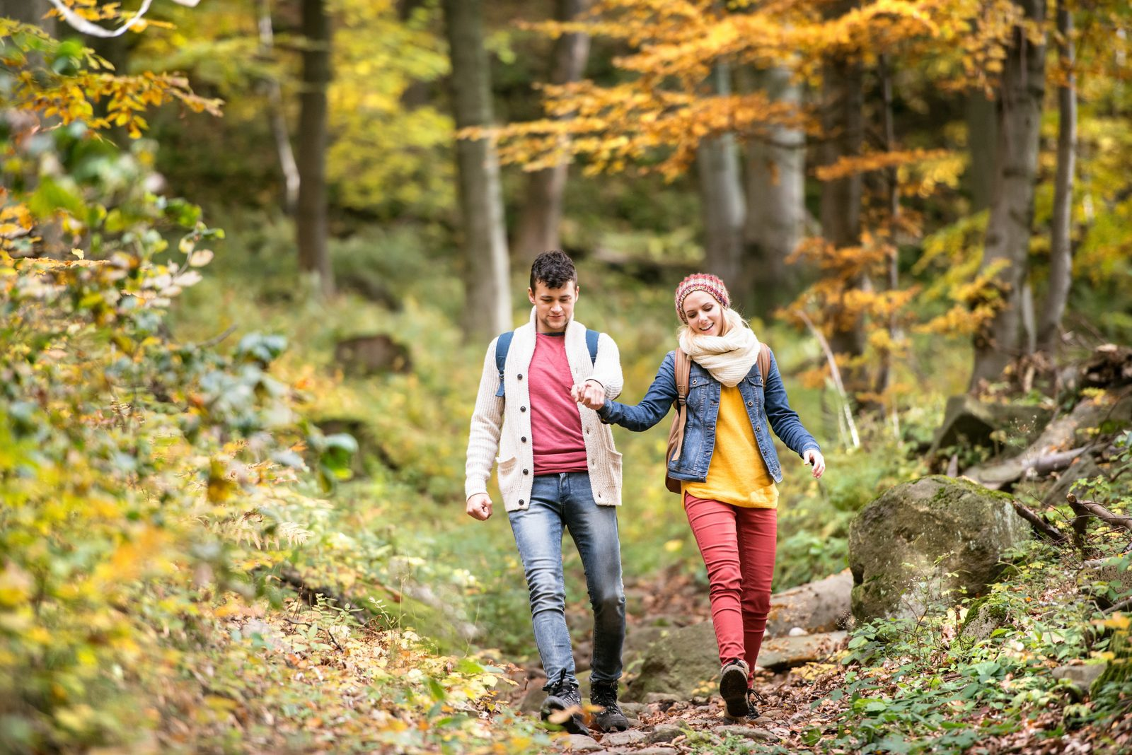 Experience autumn with EuroParcs