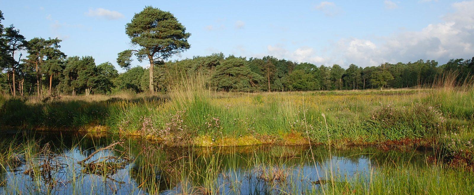 Provinz Gelderland