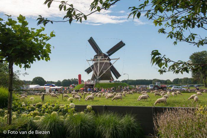 vakantiepark gelderland